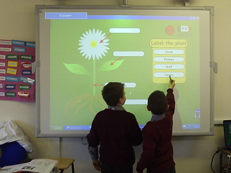 Interactive Whiteboard Teacher Class Students Annotate Annotation Draw Drawing